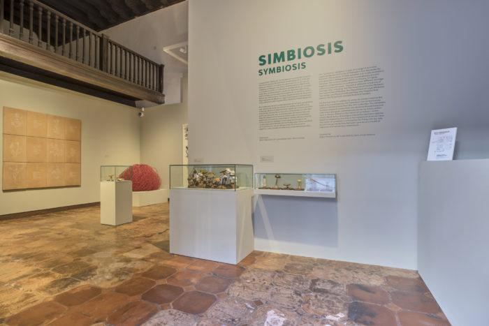 Simbiosis catalogo-Jose Albornoz_1